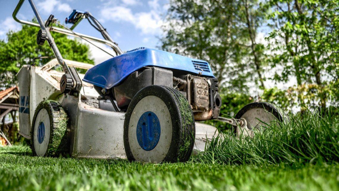 Préparez votre jardin pour le printemps !