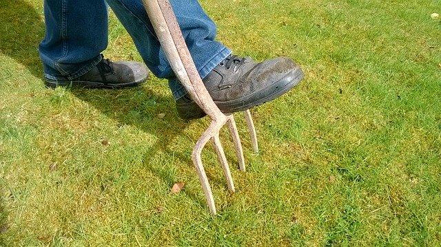 Comment créer un business d'entretien de jardin ?