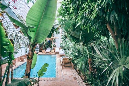Comment mettre en valeur votre terrasse de jardin?